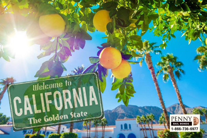 Here Are Somethings to Do This Spring in California