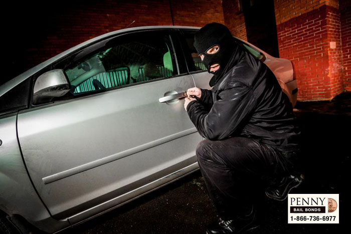 protecting yourself from burglars