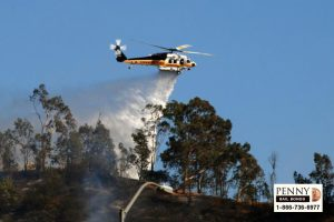 preventing wildfires in california