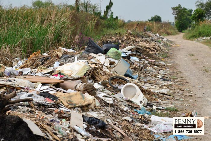illegal dumping consequences